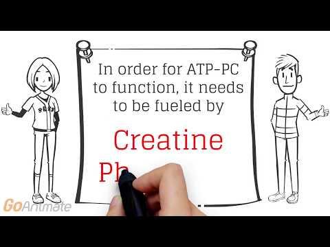 atp pc system